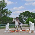 currey ingram trish franks equestrian riding school (560 of 593)