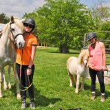 currey ingram trish franks equestrian riding school (98 of 593)