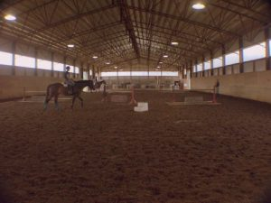 MTHJA Hunters Court IV - Double Pnts @ Hunters Court Stable | Rockvale | Tennessee | United States