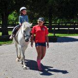 Trish franks riding school Nashville (1 of 1)