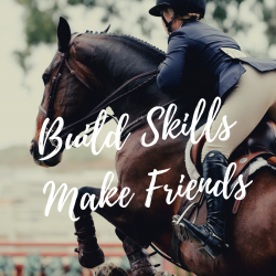 Summer horse camp trish franks riding school (2)