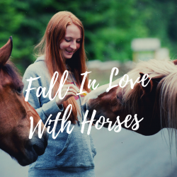 Summer horse camp trish franks riding school (4)